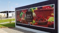 Agricultura en Tacna: El rol de la empresa privada para activar cadenas de valor