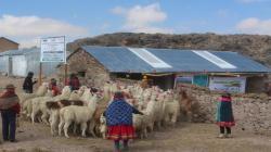 Agro Rural construyó 2.353 cobertizos en 10 regiones del país