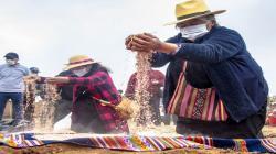 Agro Rural lanzó Campaña de Siembra de Pastos y Forrajes 2021-2022