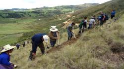 Agro Rural protege 1.434 hectáreas de suelos en zonas altoandinas