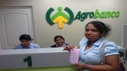 Agrobanco atendió a 50.769 pequeñas productoras agropecuarias en los últimos cinco años