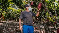 Agrobanco duplica colocaciones en primer trimestre de 2021