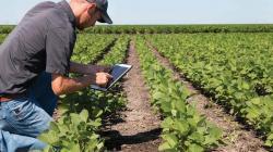 Agroindustriales captan profesionales desus zonas de operaciones para evitar la restricción en desplazamientos