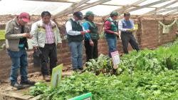 AgroRural implementará 2.163 fitotoldos en doce regiones