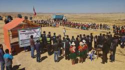 Agrorural Implementará 665 cobertizos para alpacas y ovinos en Puno