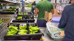 Alerta en la región ante posibles nuevas barreras sanitarias 'Covid-free' en el comercio internacional de alimentos