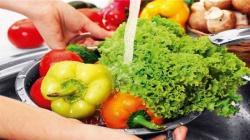Alimentos no contagian el Covid-19