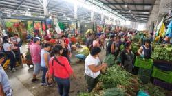 Análisis halla agroquímicos por encima del límite en muestras de frutas y verduras de Lima