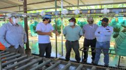 APPBOSA busca mejorar la calidad y eficiencia en los procesos de empaque del banano orgánico