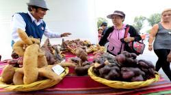 Aprueban reglamento de la Ley de Promoción del Desarrollo de Mercados de Productores