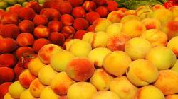 Baja el volumen pero aumenta el valor de la exportación española de frutas y hortalizas