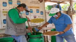 Cacaoteros de San Martín innovan con biofertilizantes de melaza de caña