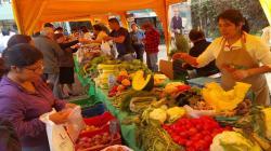 Capacitan a productores rurales para promover alimentación saludable en 20 regiones