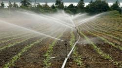 Cerca de 2.200 millones de personas no gozan de los beneficios de contar con agua dulce