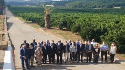 """Cítricos Valencianos aglutina """"la unidad del sector"""" por segundo año consecutivo en el Primer Corte de la Naranja Valenciana"""