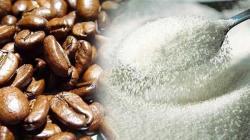 Clima puede reducir producción de azúcar y café en 50% para 2099