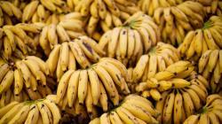 Colombia, aún cruda en exportación de alimentos y bebidas