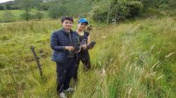 Colombia: proponen que sea requisito plantar un árbol para graduarse del colegio y la universidad