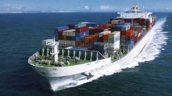 Comercio marítimo refrigerado de frutas, verduras, carne, pescado y productos lácteos en el mundo alcanzó cerca de 121.5 millones de toneladas en 2019