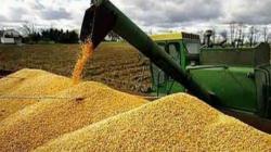"""ComexPerú: """"Si solo se consumiera productos nacionales, precios de alimentos subirían por escasez"""""""