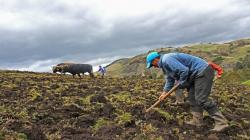 Comisión Agraria del Congreso plantea seguro para la agricultura familiar