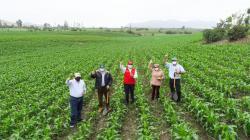 Congreso aprueba la creación del Ministerio de Desarrollo Agrario y Riego