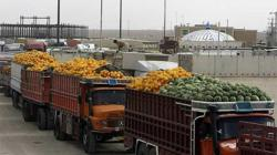 Consejo Agropecuario del Sur y Perú definieron recomendaciones para enfrentar emergencia sanitaria y asegurar abastecimiento de alimentos