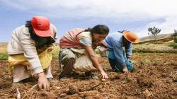 Conveagro anunció paro nacional agrario indefinido