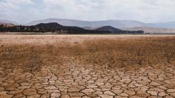 Crece riesgo de escasez de alimentos debido al cambio climático