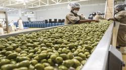¿Cuáles fueron los productos claves de agroexportación peruana en Brasil el año pasado?