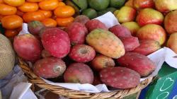 ¿Cuántas hectáreas de tuna, manzana, granadilla y durazno hay en el país?