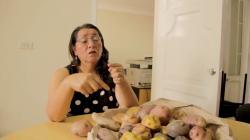 Desarrollarán tecnología con inteligencia artificial para la selección de papas andinas