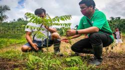 Devida fortalece desarrollo alternativo en distritos de Río Tambo y Pangoa