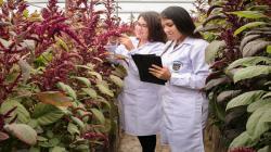 Día de la investigación agropecuaria: Seguridad y soberanía alimentaria