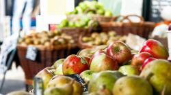 EE.UU. reduce estimación de exportación e importación de productos agrícolas para el año financiero 2020