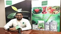 El futuro de la agricultura está en soluciones que ayuden a la planta a defenderse sola de plagas y enfermedades