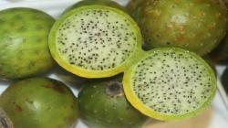 El sanky, la fruta del Ande peruano que tiene múltiples beneficios para la salud