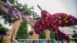 Empezó Perúflora 2019 en el Parque Kennedy de Miraflores