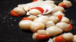 Empresarios pesqueros buscarán compradores europeos en rueda de negocios virtual