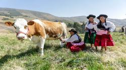 En nuestro país, el sector agropecuario involucra la mano de obra de dos millones de mujeres