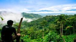 En San Martín se logra la primera zonificación forestal del país