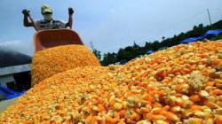 Estado Peruano dejó de percibir US$ 3.600 millones por desgravacion arancelaria a la importación de productos agropecuarios desde 2008 a la fecha
