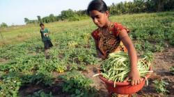 """""""Este año vamos a fortalecer la Agricultura rural familiar"""""""
