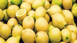 Europa, un competitivo mercado para la exportación de limones