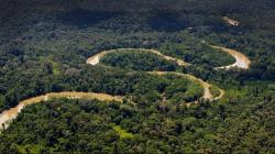 Exhortan a que próximo Gobierno priorice acciones para el desarrollo sostenible en la Amazonía