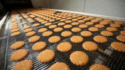 Exportación de galletas dulces suman US$ 13.8 millones en el primer semestre