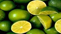 Exportación de limón Tahití llega a US$ 4 millones entre enero y julio de este año