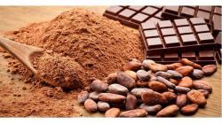 Exportaciones de cacao y derivados crecieron en valor 7.3% en el 2019