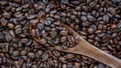 Exportaciones de café en grano llegaron a valores de casi US$ 171 millones en los primeros siete meses del año