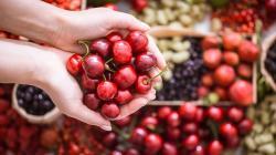 Exportaciones de fruta fresca de Chile caen en valor 10% en el 2020